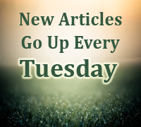 New Articles Every Tuesday